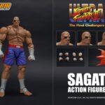 Sagat (9)