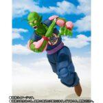 Piccolo (4)