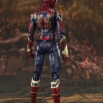 Spider (11)