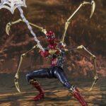Spider (5)
