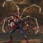 Spider (6)