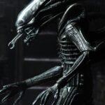 Alien (11)