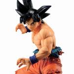 Goku (9)