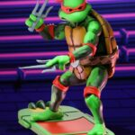Tortugas (21)