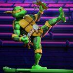 Tortugas (24)