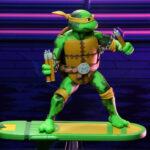 Tortugas (27)