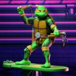 Tortugas (28)