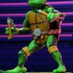 Tortugas (29)